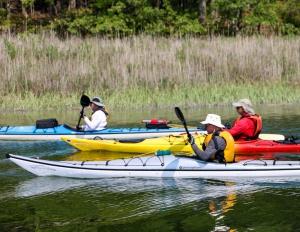 Kayak & Paddle Board Rentals